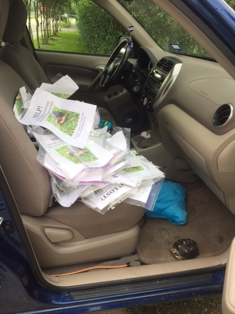 The huge pile of mangled flyers we retrieved from lamp posts, stop signs and local businesses. Malti rode with me to get every last one of them!