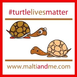 Turtle Lives Matter